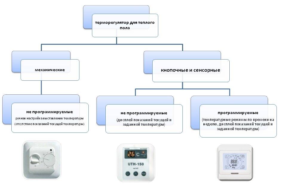 видов терморегуляторов